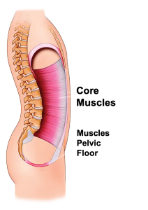 The Attain Device as part of the Viveve Solutions at Osteopathic Integrative Medicine works as done-for-you pelvic floor therapy from the comfort of your own home.